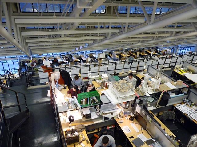 """Harvard School Of Design - """"Un grand espace avec des box ouverts dédiés au travail individuel et collaboratif """" © JLL / Sciences Po"""