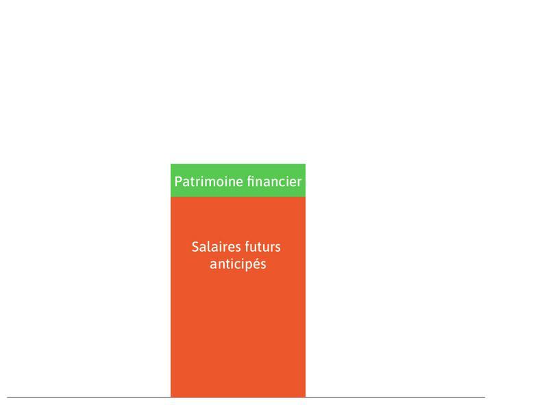 Patrimoine financier : C'est le rectangle vert.
