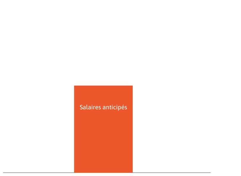 Les salaires anticipés : Ils sont représentés par le rectangle orange. C'est l'ensemble des revenus du travail salarié que le ménage anticipe de percevoir au cours de sa vie active.