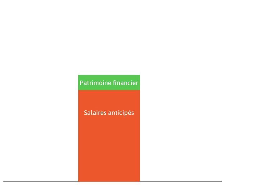 Patrimoine financier : C'est le rectangle vert. Le patrimoine financier d'un ménage se compose de l'assurance-vie, des dépôts bancaires (dont les livrets) et des titres, comme les actions et les obligations, détenus par ce ménage.