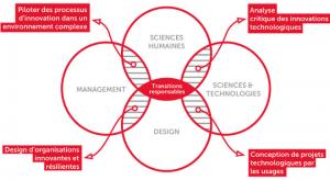 Schéma pédagogique du Master innovation & transformation numérique, École du management et de l'innovation. Crédits Sciences Po