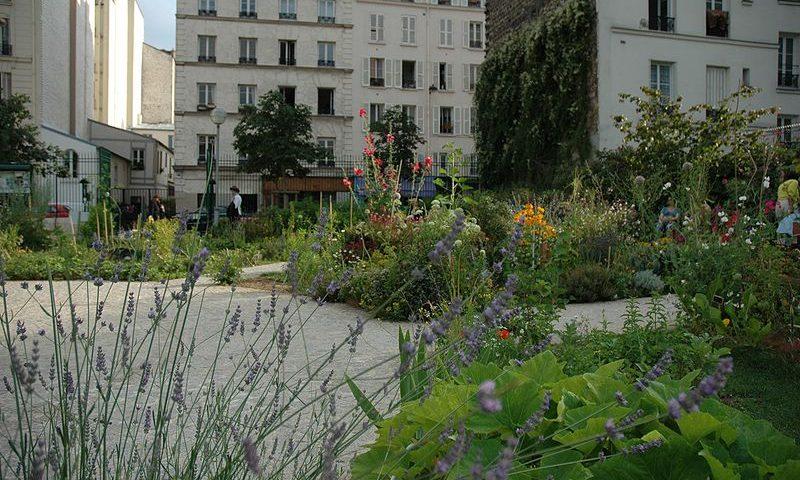 Jardin Partagé du Poireau Agile, Paris.