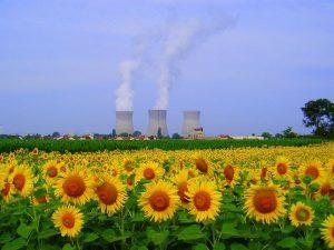 Centrale nucléaire du Bugey et champ de tournesol. CC BY-SA 2.0