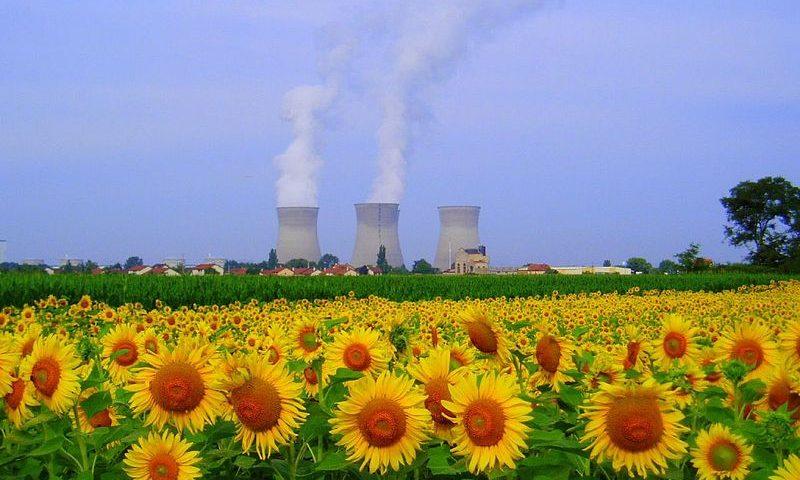 Centrale nucléaire du Bugey et champ de tournesol. CC BY-SA 2.0)