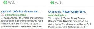 Capture écran de résultats sur un moteur de recherche. Public Domaine