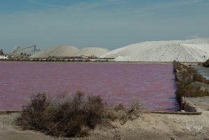 France baie sel réservoir terrain Camargue marais salant Montagne salée Morts aiguë CC0 Domaine public