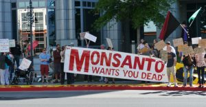 PROTEST AGAINST MONSANTO par OccupyReno MediaCommittee, Flickr, CC BY-ND 2.0