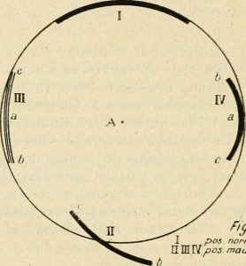 ANTHROPOLOGIE ellipse. Source : Association française pour l'avancement des sciences. Aucune restriction de droits d'auteur connue