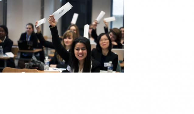 Un sommet de l'ONU à Reims : jeu de rôle géant pour 300 étudiants