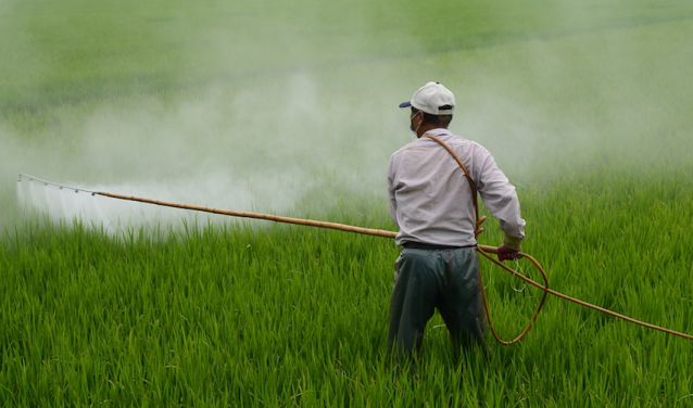 Pesticides: What is the Real Cost for Health?